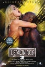 L'�talon noir 3 - DVD - Le plus grand sexe du monde est black!