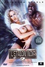 L'�talon noir 2 - DVD - Le retour du plus grand sexe du monde.